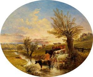 Landschap met beek en vee