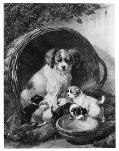 Hond en puppies voor een rieten mand