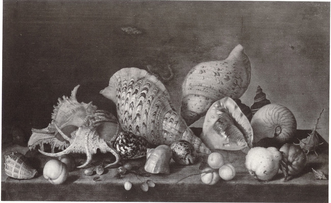 """<a class=""""recordlink artists"""" href=""""/explore/artists/2800"""" title=""""Balthasar van der Ast""""><span class=""""text"""">Balthasar van der Ast</span></a> of <a class=""""recordlink artists"""" href=""""/explore/artists/69843"""" title=""""Philipp Sauerland (II)""""><span class=""""text"""">Philipp Sauerland (II)</span></a>"""