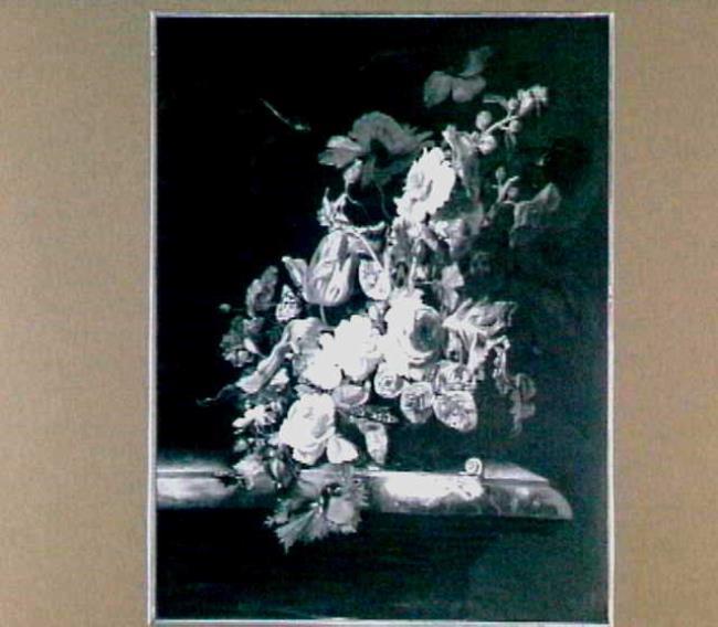 "<a class=""recordlink artists"" href=""/explore/artists/80207"" title=""Simon Verelst""><span class=""text"">Simon Verelst</span></a> after <a class=""recordlink artists"" href=""/explore/artists/565"" title=""Willem van Aelst""><span class=""text"">Willem van Aelst</span></a>"