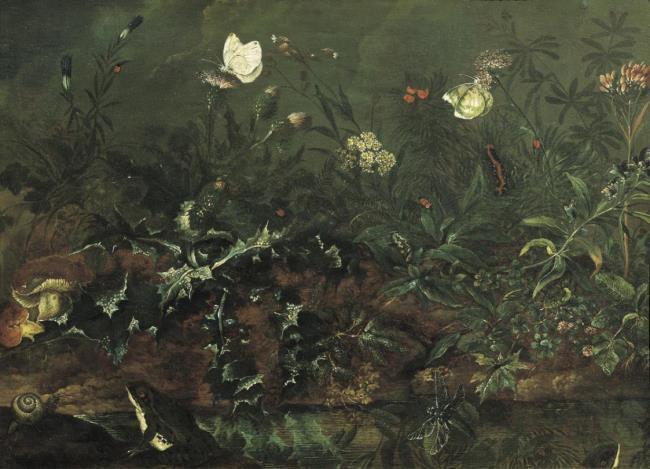 """<a class=""""recordlink artists"""" href=""""/explore/artists/65094"""" title=""""Franz Michael Siegmund von Purgau""""><span class=""""text"""">Franz Michael Siegmund von Purgau</span></a>"""