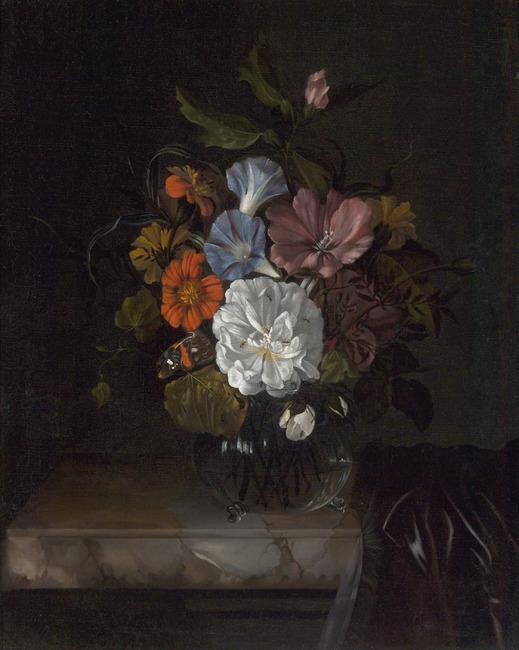 """<a class=""""recordlink artists"""" href=""""/explore/artists/69062"""" title=""""Anna Ruysch""""><span class=""""text"""">Anna Ruysch</span></a>"""