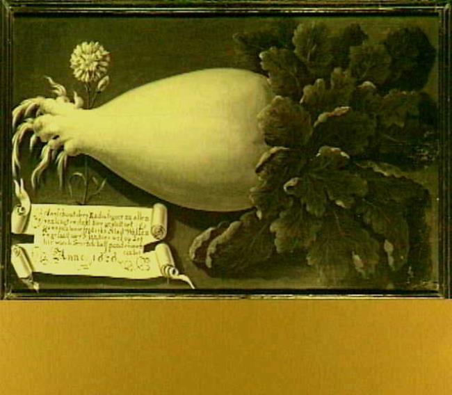 "<a class=""recordlink artists"" href=""/explore/artists/1984"" title=""Anoniem""><span class=""text"">Anoniem</span></a> <a class=""thesaurus"" href=""/en/explore/thesaurus?term=29960&domain=PLAATS"" title=""Noordelijke Nederlanden (historische regio)"" >Noordelijke Nederlanden (historische regio)</a> 1626 gedateerd"