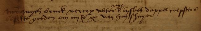 Leiden, 1529-04-05, Schepenbank (Oud Rechterlijk Archief), nummer toegang 0508, inv. no. 42+5 (Wedboek 1528-1530)