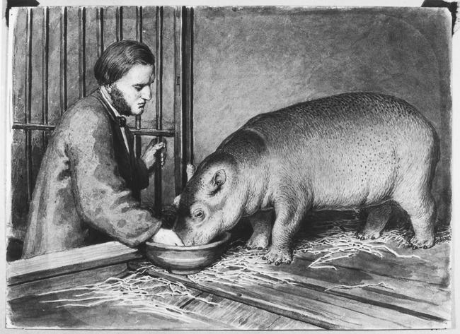 """<a class=""""recordlink artists"""" href=""""/explore/artists/122894"""" title=""""Heinrich Leutemann""""><span class=""""text"""">Heinrich Leutemann</span></a>"""