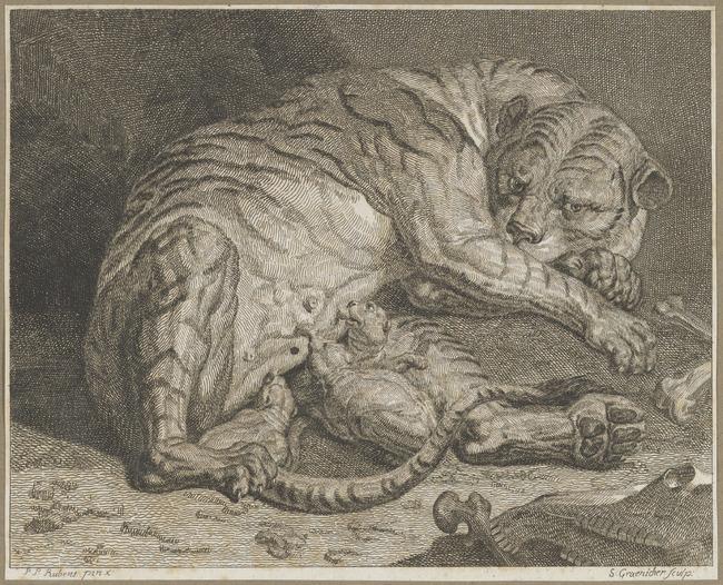 """<a class=""""recordlink artists"""" href=""""/explore/artists/33215"""" title=""""Samuel Gränicher""""><span class=""""text"""">Samuel Gränicher</span></a> after <a class=""""recordlink artists"""" href=""""/explore/artists/68737"""" title=""""Peter Paul Rubens""""><span class=""""text"""">Peter Paul Rubens</span></a>"""