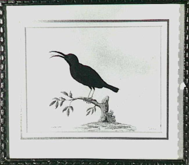 "<a class=""recordlink artists"" href=""/explore/artists/92969"" title=""Jan Jansz. van der Vinne""><span class=""text"">Jan Jansz. van der Vinne</span></a>"