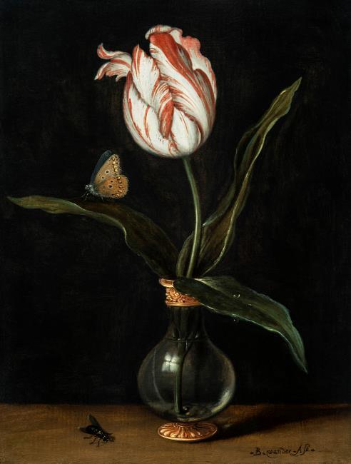 """<a class=""""recordlink artists"""" href=""""/explore/artists/2800"""" title=""""Balthasar van der Ast""""><span class=""""text"""">Balthasar van der Ast</span></a>"""