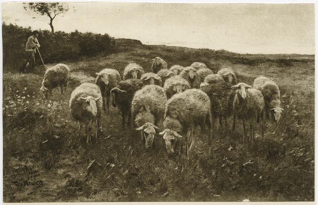 "<a class=""recordlink artists"" href=""/explore/artists/55601"" title=""François Pieter ter Meulen""><span class=""text"">François Pieter ter Meulen</span></a>"