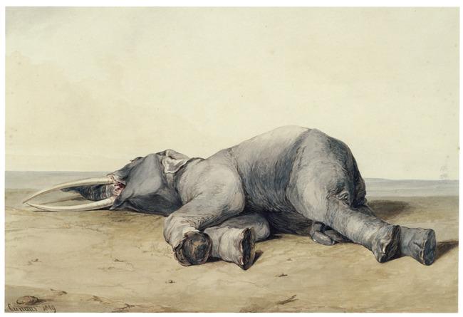 "<a class=""recordlink artists"" href=""/explore/artists/19380"" title=""Conradijn Cunaeus""><span class=""text"">Conradijn Cunaeus</span></a>"